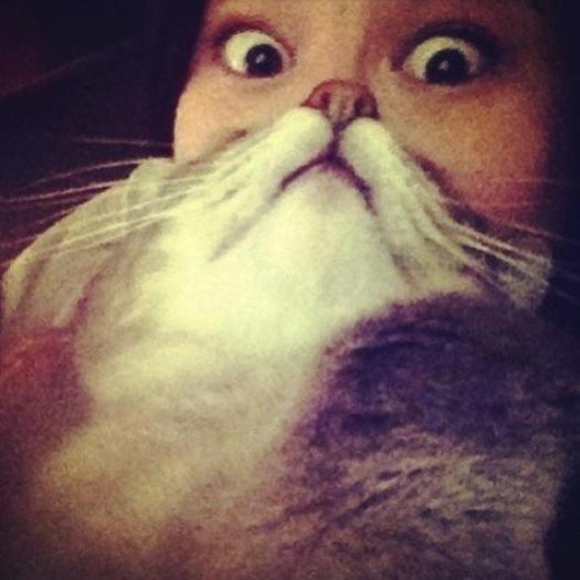 catbeard5